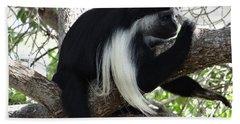Colobus Monkey Resting In A Tree Bath Towel