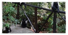 Colobus Monkeys At Sands Chale Island Hand Towel