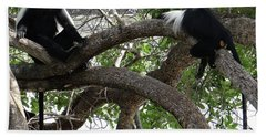 Colobus Monkeys Sitting In A Tree Hand Towel