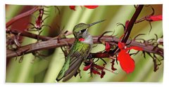 Color Coordinated Hummer Bath Towel by Debbie Oppermann