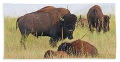 Colorado Buffalo 0096 Hand Towel