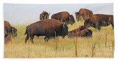 Colorado Buffalo  0099 Hand Towel
