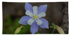 Colorado Columbine Flower Hand Towel