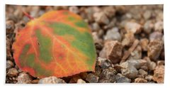 Colorado Fall Colors Hand Towel by Christin Brodie