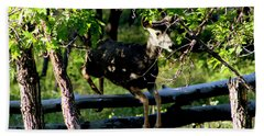 Colorado Mule Deer Jumping A Fense Bath Towel