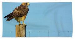 Bath Towel featuring the photograph Colorado Swainson's Hawk Perched by John De Bord
