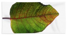 Colorful Autumn Leaf On White Background Hand Towel