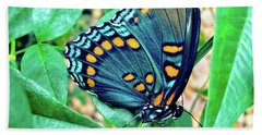 Colorful Butterfly Hand Towel
