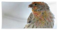 Colorful Finch Eating Breakfast Bath Towel