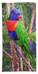 Colorful Parakeet Bath Towel by Stephanie Hayes