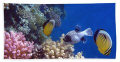 Colorful Red Sea Fish And Corals Bath Towel
