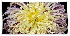 Colorful Spider Chrysanthemum   Bath Towel