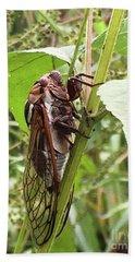 Colorful Summer Cicada Bath Towel
