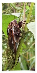 Colorful Summer Cicada Hand Towel