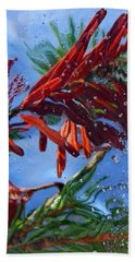 Colors Of Nature Hand Towel