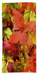 Colours Of Autumn Bath Towel by Brian Chase