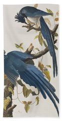 Columbia Jay Hand Towel by John James Audubon