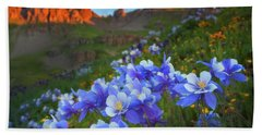 Hand Towel featuring the photograph Columbine Sunrise by Darren White