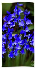 Common Bluebell Hand Towel by Stephen Melia