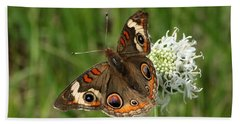 Common Buckeye Butterfly On Wildflower Bath Towel by Sheila Brown