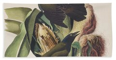 Common Crow Hand Towel by John James Audubon