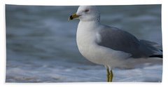 Common Gull Bath Towel