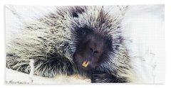 Common Porcupine Hand Towel