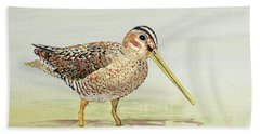 Bath Towel featuring the painting Common Snipe Wading by Thom Glace