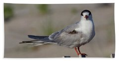 Common Tern Bath Towel