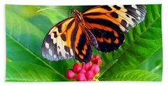 Common Tiger Glassywing Butterfly Bath Towel