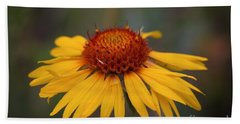 Cone Flower Hand Towel by John Roberts