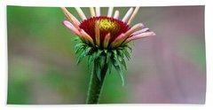 Coneflower Bloom Hand Towel