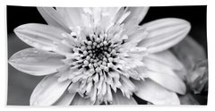 Bath Towel featuring the photograph Coreopsis Flower Black And White by Christina Rollo