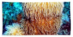 Bath Towel featuring the photograph Corky Sea Finger Coral - The Muppet Of The Deep by Amy McDaniel