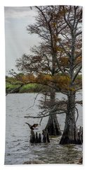Hand Towel featuring the photograph Cormorant by Paul Freidlund