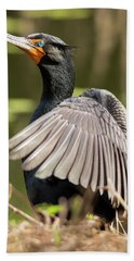 Cormorant Portrait Bath Towel