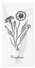 Cornflower Botanical Drawing Hand Towel