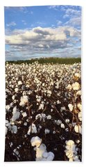 Cotton Field In South Carolina Bath Towel