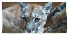Cougar Bath Towel