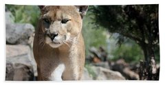 Cougar Hand Towel