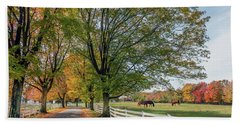 Country Road In Rural Maryland During Autumn Hand Towel
