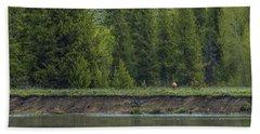 Cow Elk On The Riverbank Hand Towel
