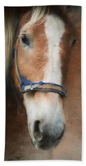 Hand Towel featuring the photograph Cow Pony by Robin-Lee Vieira
