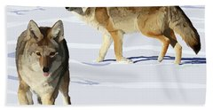 Coyote Pair Bath Towel