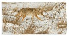 Coyote Stalk Hand Towel