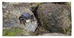 Crab On Rocks Bath Towel by Suzanne Luft