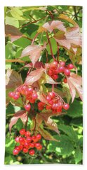 Cranberry Cluster Bath Towel