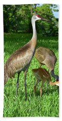 Crane Family Picnic Bath Towel