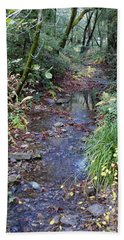 Creek On Mt Tamalpais 2 Bath Towel