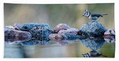 Crested Tit's Reflection Hand Towel